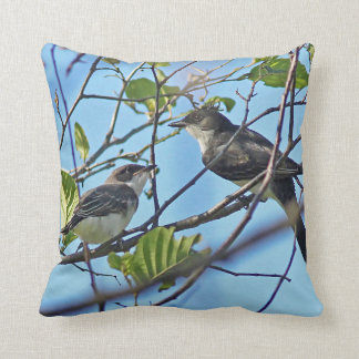 Eastern Kingbird and fledgling Cushion