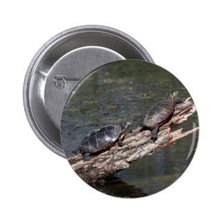 Eastern Painted Turtle Buttons