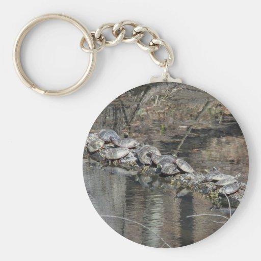 Eastern Painted Turtle Key Chain