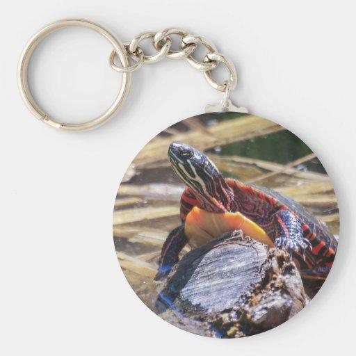Eastern Painted Turtle Keychain