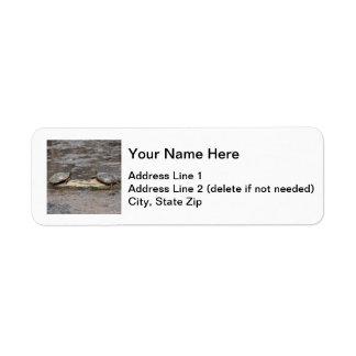 Eastern Painted Turtle Return Address Label
