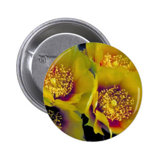 Eastern prickly pear cactus pinback button