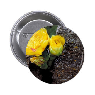 Eastern prickly pear cactus pinback buttons