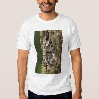 Eastern Screech Owl Gray Phase) Otus asio, T-shirts