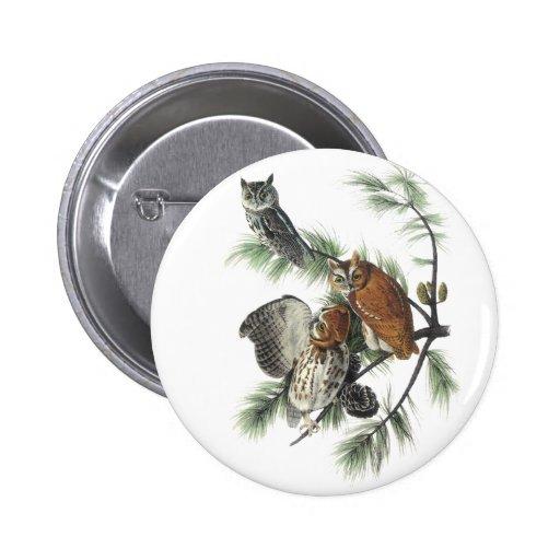 Eastern Screech Owl, John Audubon Button