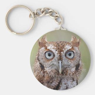 Eastern Screech Owl Photograph Basic Round Button Key Ring