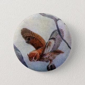 Eastern Screech Owls 6 Cm Round Badge