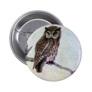 Eastern Screech Owls Pinback Button