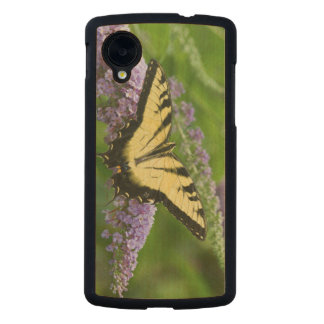 Eastern Tiger Swallowtail butterfly Carved® Maple Nexus 5 Slim Case