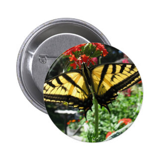 Eastern Tiger Swallowtail Butterfly Pin