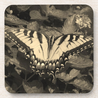 Eastern Tiger Swallowtail Drink Coasters