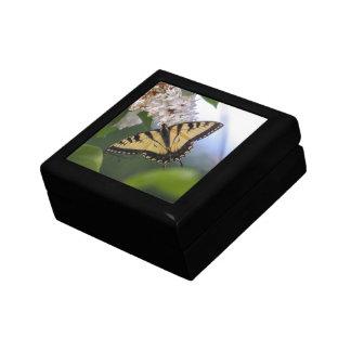 Eastern Tiger Swallowtail Gift Box