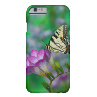 Eastern Tiger Swallowtail on Fresia - Sammamish Barely There iPhone 6 Case
