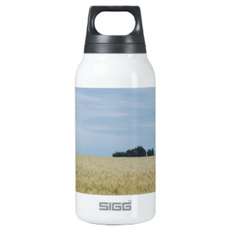 Eastern Washington Wheat Field 0.3L Insulated SIGG Thermos Water Bottle