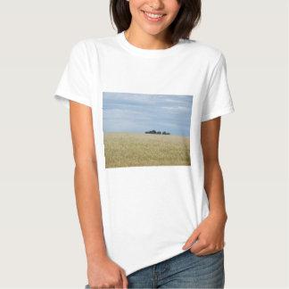 Eastern Washington Wheat Field Shirts