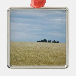 Eastern Washington Wheat Field Silver-Colored Square Decoration
