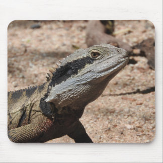 Eastern Water Dragon Mouse Pad