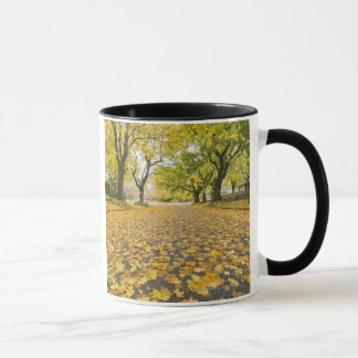 Eastmoreland Neighborhood In Autumn Mug
