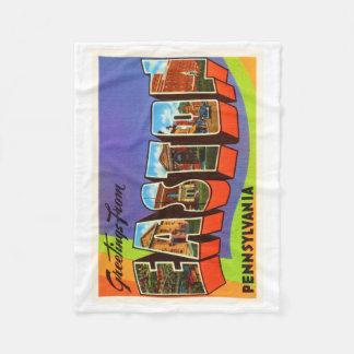 Easton Pennsylvania PA Old Vintage Travel Souvenir Fleece Blanket