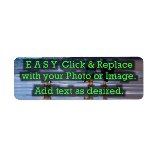 Easy Click & Replace Image to Create Your Own Return Address Label