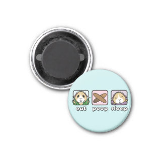 Eat Poop Sleep Guinea Pig Fridge Magnet