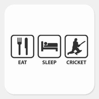 Eat Sleep Cricket Square Sticker