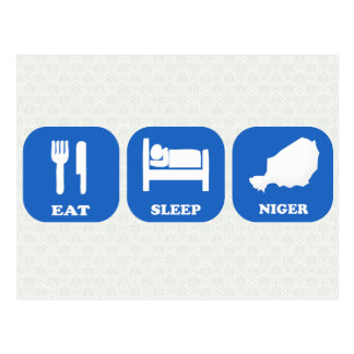 Eat Sleep Niger Postcard