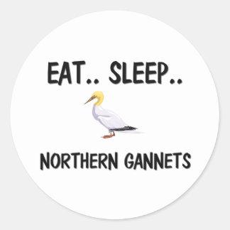 Eat Sleep NORTHERN GANNETS Classic Round Sticker