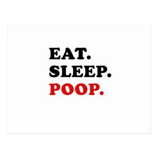 Eat Sleep Poop Postcard