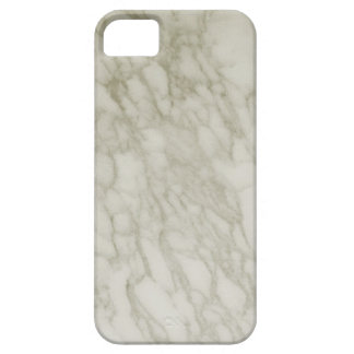Ebony Ivory Streaked Green and White Marble iPhone 5 Cover