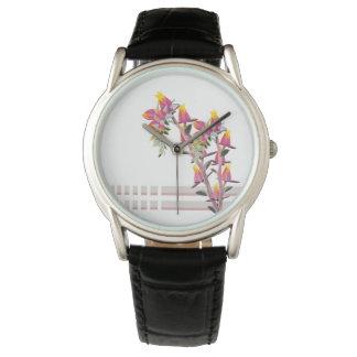 Echeveria elegans rose watch