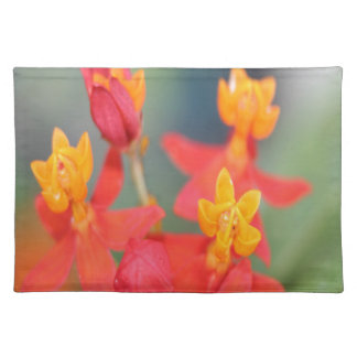 Echeveria Succulent Red and Yellow Flower Placemat
