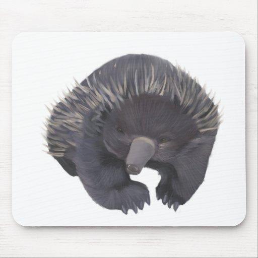 Echidna Mousepad