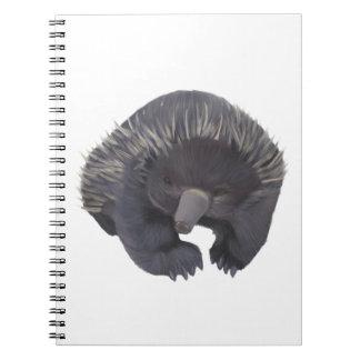 Echidna Spiral Note Books
