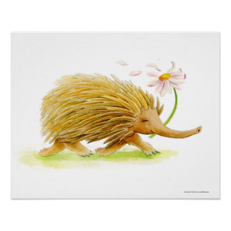 Echidna watercolor whimsy art poster
