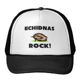 Echidnas Rock Cap