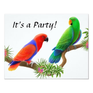 Eclectus Birds Invitation