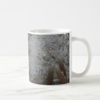 Eclipse Butterfly Fish Coffee Mug