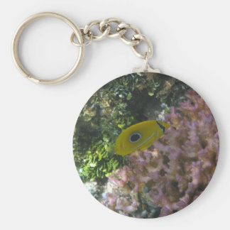 Eclipse Butterfly Fish Swimming By Coral Keychains