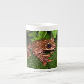 Ecnomiohyla Rabborum Rabbs Fringe Limbed Tree Frog Bone China Mug