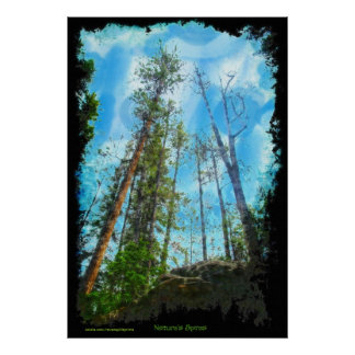 Eco Friendly Nature's Spires Forest Painting Art Poster