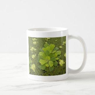 Eco green mug