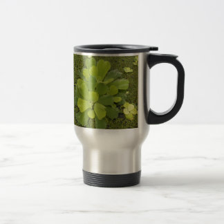 Eco green coffee mugs