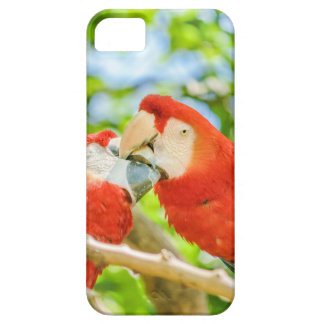 Ecuadorian Parrots at Zoo, Guayaquil, Ecuador Barely There iPhone 5 Case