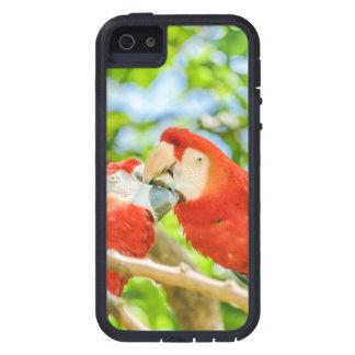 Ecuadorian Parrots at Zoo, Guayaquil, Ecuador Case For iPhone 5