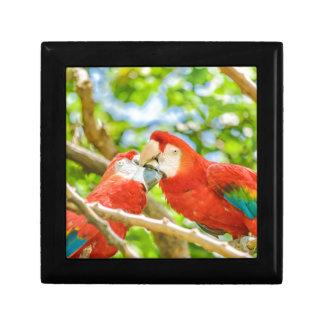 Ecuadorian Parrots at Zoo, Guayaquil, Ecuador Gift Box