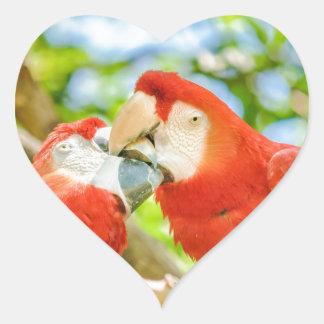 Ecuadorian Parrots at Zoo, Guayaquil, Ecuador Heart Sticker