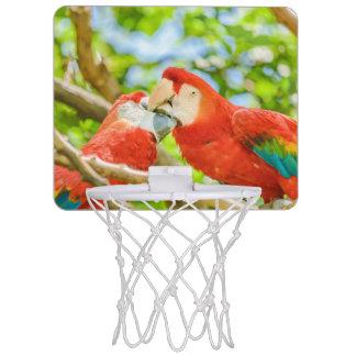 Ecuadorian Parrots at Zoo, Guayaquil, Ecuador Mini Basketball Hoop