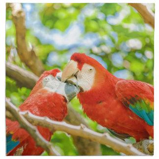 Ecuadorian Parrots at Zoo, Guayaquil, Ecuador Napkin
