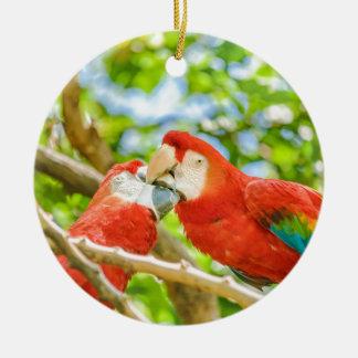 Ecuadorian Parrots at Zoo, Guayaquil, Ecuador Round Ceramic Decoration